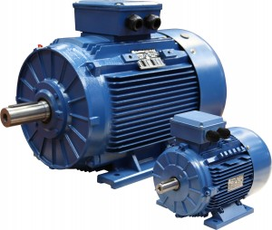 Maintenance of three phase induction motor